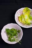 Sałaty i pietruszki liście Zdjęcie Stock
