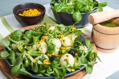 Sałaty sałatka, grule i tofu, Zdjęcie Stock