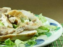 sałatka z kurczaka obrazy stock