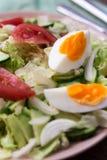 Sałatka z pomidorami, jajko, ogórek Fotografia Stock