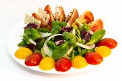 sałatkowy warzywo Fotografia Royalty Free