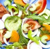 Sałatkowych pomidorowych ogórkowych rzodkwi ofoschey marchewek selerowy cebulkowy peppe Fotografia Stock