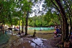 Sa Morakot, σμαραγδένια λίμνη, Krabi, Ταϊλάνδη Στοκ Φωτογραφίες