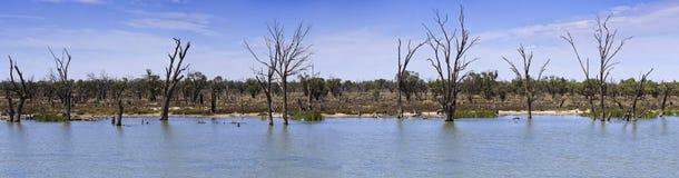 SA Murray  across tele panorama Royalty Free Stock Photography