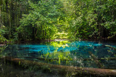 SA Nam Phut est belle piscine de ressort en parc national de forêt Photos stock