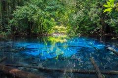 SA Nam Phut est belle piscine de ressort en parc national de forêt Photo libre de droits