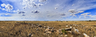 SA Nullarbor Plain Day panorama Royalty Free Stock Image