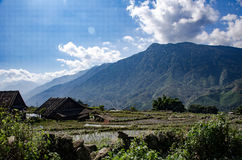 Sa Pa Valley Royalty Free Stock Photos