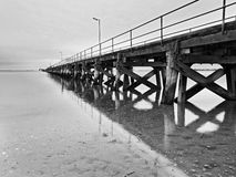 SA Streaky bay jetty seabed BW Royalty Free Stock Photos