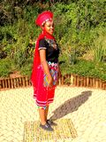 SA Traditional Model posing South Africa. Traditional models posing  in zulu attires Royalty Free Stock Image