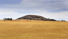 SA Wudinna Granite Mount Stock Photos