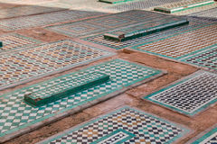Saadian gravvalv, Marrakesh, Marocko Arkivbilder
