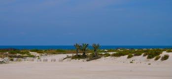Saadiyat Openbaar Strand, Saadiyat-Eiland, Abu Dhabi, de V.A.E stock afbeeldingen