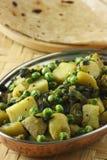 Saag Aloo Bhuna - piatto degli spinaci e della patata Fotografia Stock Libera da Diritti