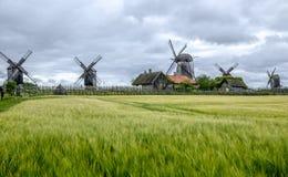 Saaremaa dell'isola, Estonia, Europa, i mulini del angla Immagini Stock Libere da Diritti