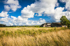 Saaremaa island, Estonia Royalty Free Stock Photos