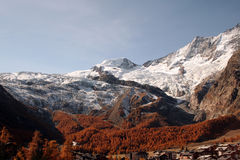 Saas fee forest autumn Royalty Free Stock Photography
