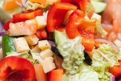 Sałatka karmowa, świeży, zdrowy, dieta, zakąska, posiłek, zbliżenie, warzywo Zdjęcie Stock