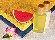Sabão, champô, gel do chuveiro e toalhas Fotografia de Stock Royalty Free