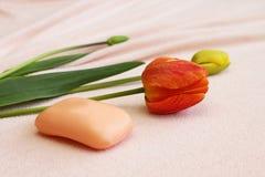 Sabão com os tulips na toalha Imagens de Stock Royalty Free
