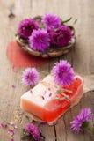 Sabão erval Handmade Fotografia de Stock