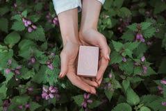 Sabão orgânico natural nas mãos de uma menina foto de stock royalty free