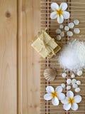 Sabão, shell, pedras e flores do tiare Fotos de Stock Royalty Free