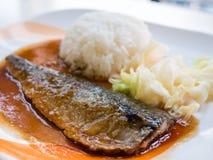 Saba鱼排 图库摄影