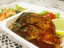 Saba鱼用酱油 免版税库存图片