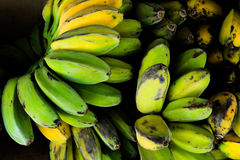 Saba Banana Royalty Free Stock Photo