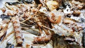 Saba fish bone Royalty Free Stock Photos