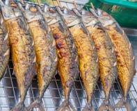 Saba fish Royalty Free Stock Photography