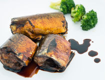 Saba fish grilled in teriyaki sauce. Saba fish grilled in teriyaki sauce on white plate Royalty Free Stock Photography
