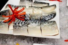 Saba fish Stock Photography