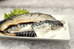 Saba fish on a white plate Royalty Free Stock Image