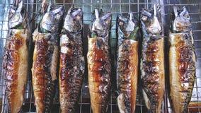 Saba Mackerel Fish arrostito su Mesh Tray d'acciaio Immagini Stock Libere da Diritti
