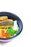 Saba and rice or Shioyaki Stock Photos