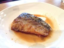 Saba ryba z kumberlandem Fotografia Stock