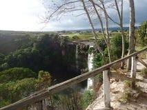sabana el Amazonas Venezuela de la cascada del agua gran Fotos de archivo