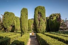 Sabatini庭院和马德里王宫  免版税库存照片