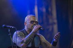 Sabaton Royalty Free Stock Images