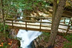 Sabbadaydalingen van Wit Berg Nationaal Bos Stock Afbeeldingen