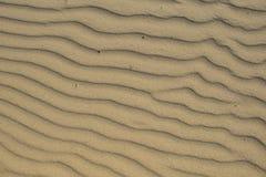 Sabbia bagnata sul Mar Baltico fotografia stock