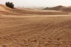 Sabbia che si muove nel deserto dei UAE immagine stock