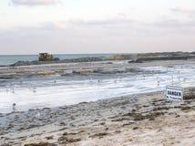 Sabbia commovente scavatrice della spiaggia dopo erosione in Palm Beach, Florida immagine stock libera da diritti