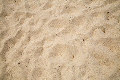Sabbia costiera della spiaggia Immagine Stock Libera da Diritti