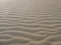 Sabbia del deserto Fotografia Stock