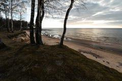 Sabbia del muschio e cielo nuvoloso sulla spiaggia sul Veczemju marino baltico Klintis, Lettonia - 13 aprile 2019 fotografia stock libera da diritti