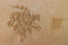 Sabbia della galassia sulla spiaggia Fotografia Stock Libera da Diritti