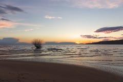 Sabbia della spiaggia dell'albero del fiume ed il cielo Immagini Stock Libere da Diritti